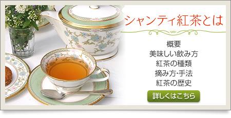 シャンティ紅茶とは:概要、紅茶の栽培へのこだわり、美味しい飲み方の説明