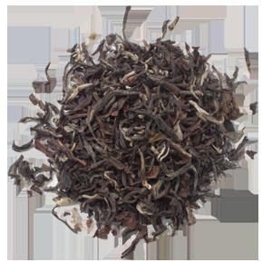 2017 セカンドフラッシュ・ダージリン(タルボ茶園産)