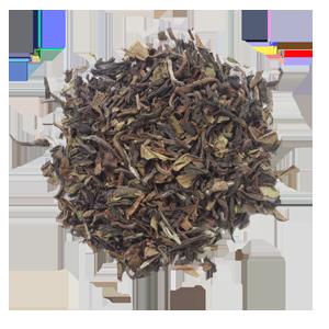 2017 セカンドフラッシュ・ダージリン(ギール茶園産)